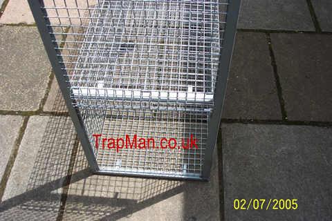 fox trap door & Fox traps The Trap Man live capture fox traps catches foxes alive ...
