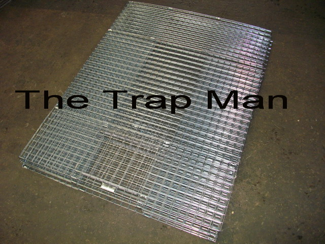 how to make a homemade pigeon trap